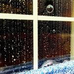 Grand Rapids window cleaning company